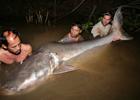 В Индии поймали страшного мутанта-людоеда. Фото