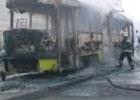 Во Львове дотла сгорел трамвай. Фото