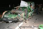 Нелепая авария на Закарпатье лишила жизни молодого парня. Фото