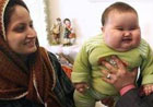 Шестимесячный иранец весит около 20 кг. Фото