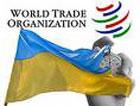 Названо самое позитивное достижение Украины в 2008 году