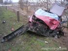 На Николаевщине женщина за рулем выскочила на встречку и убила человека. Фото