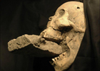 Археологи нашли скелет… вампира. Фото