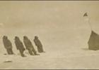Первые люди на Южном полюсе. Уникальные снимки