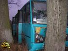 Черниговщина. Слетевший с дороги автобус напоролся на дерево. В результате пострадали люди. Фото