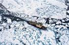 Холодный ужас. Российский ледокол застрял во льдах Антарктики. Фото