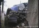Киев. После столкновения с деревом, водитель и пассажир смылись в неизвестном направлении. Фото