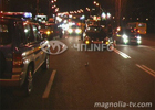 Киев. Пешеход погиб недалеко от остановки, угодив под колеса легковушки. Фото