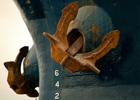 В Мраморном море в украинское судно врезался турецкий сухогруз. Человеческих жертв избежать не удалось