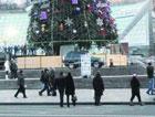 На Майдане украсили главную елку страны. Фото