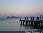 Непогода сорвала работу портов на Одесщине