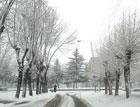 В «Киевавтодоре» уверяют, что чистят дороги и днем, и ночью. Ну и где же результат?
