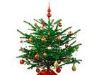 Как сделать новогоднюю елку безопасной. Рекомендации МЧС