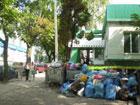 Жара и смрад. Тернополь загнивает в мусоре. Фото