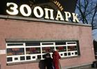 Скандал. Из Киевского зоопарка пропали 54 обезьяны
