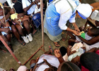 Кошмар и смерть в Гаити. Что может сделать холерный вибрион. Фото