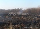 Под Киевом снова горели торфяники. Фото