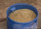 СБУ на Ивано-Франковщине нашла травки на… 6 миллиардов гривен. Фото