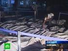 Трагедия на празднике в Камбодже. В страшной давке погибли 375 человек. Фото