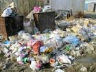 Нардеп Оробец прикрыла маленький мусоросжигательный заводик в центре Киева