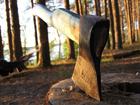 Литвиновский «хозяин леса» будет делать замеры стволов у каждого «елочного пирата»