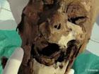 Во Франции найдена голова Генриха IV, которую потеряли более 200 лет назад. Фото