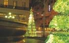 Париж умеет удивить… Очень необычные елки на улицах Франции. Фото