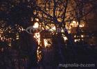 Чем собачки провинились? В Киеве сожгли приют для животных. Фото
