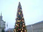 В Одессе елку украсили фото Тимошенко и колючей проволокой