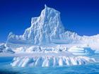 Донецкие уже осваивают Антарктиду
