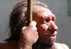 Надо же. Неандертальцы были стилягами