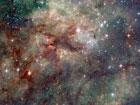 Во дают. Астрономы умудрились сфотографировать космического тарантула. Фото