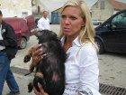 Люди мира во главе с принцессой Гогенцоллерн просят украинцев прекратить геноцид собак. Или они испортят Евро-2012