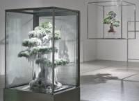 Японец придумал, как без морозильной камеры создавать обледеневшие скульптуры. Фото