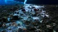 В Антарктике ученые обнаружили таинственную «сосульку смерти». Видео