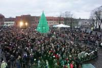 В центре Каунаса установили новогоднюю елку из бутылок. И не дорого, и посмотреть приятно. Фото