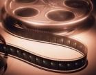 Два фильма от двух мужчин об одной известной Леди Ю.