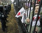 Шизофреники – за Тимошенко