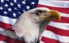 Все, конец. Последний солдат США покинул территорию Ирака