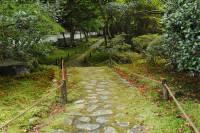 Как бы мы не любовались японскими садами, у себя такое почему-то выращивать не спешим. Фото
