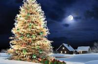 Синоптики обещают, что Новый год мы будем встречать как и положено - с морозом и снегом