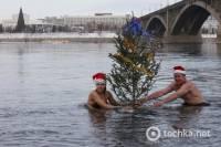 Сибирские Деды Морозы и Снегурочки искупались с елкой в холодном Енисее. Фото