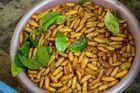 Личинки, суп из ласточкиных гнезд и другие кулинарные прелести Ханоя. Репортаж из Вьетнама. Часть III
