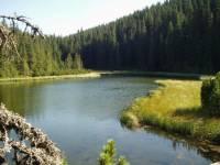 Создание ГЭС в Карпатах – хорошая идея, доведенная до абсурда /юрист/