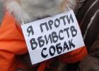 Украинцы против убийств ради Евро-2012. Но получится ли остановить эти убийства?