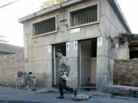 Маразм крепчает. Власти Пекина приняли нормы, по которым мухи должны залетать в туалет по очереди