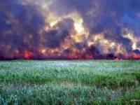 Джанкой окутан дымом. В Крыму горит 30 га камыша