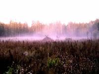 Хуто-хуторянка, или История одного переселения. Часть 1