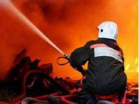 Из-за поджога едва не выгорел заповедник «Аскания-Нова». Подозреваемый уже дает показания