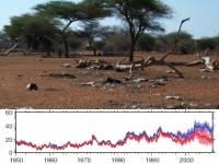 Ученые выяснили, что страшные слухи о наступающей мировой засухе оказались слегка преувеличены